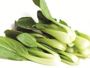 Rau cải thìa sạch thực phẩm giảm cân đáng kinh ngạc